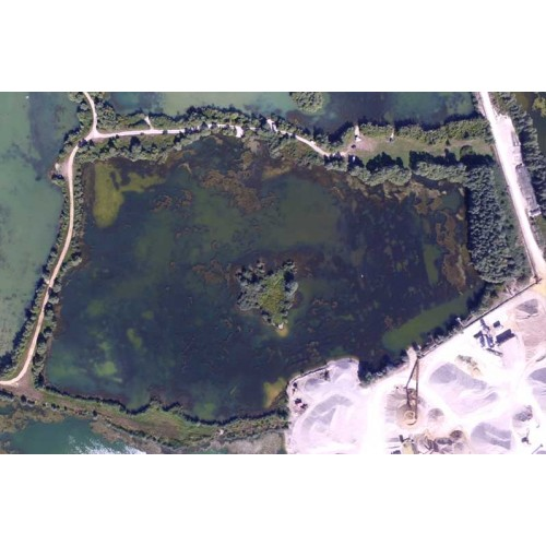 Koi Lake